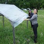 Covering plant communities in the field